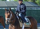 Commissioner Back in Training, Dubai Possible