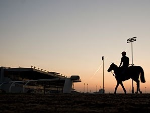 Dance And Dance - Woodbine, September 13, 2012.
