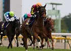 Gentildonna winning the Japanese Oaks.