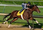 Chocolate Candy, seen here during a previous work, breezed a half-mile at Belmont Park June 1.