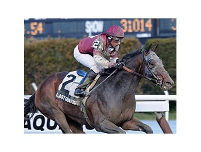 "Last Gunfighter  <br><a target=""blank"" href=""http://photos.bloodhorse.com/AtTheRaces-1/at-the-races-2013/27257665_QgCqdh#!i=2422049412&k=4xPbJF5"">Order This Photo</a>"