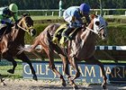 "East Hall won the 2014 Millions Classic Preview.<br><a target=""blank"" href=""http://photos.bloodhorse.com/AtTheRaces-1/At-the-Races-2014/i-zS2Xk2P"">Order This Photo</a>"