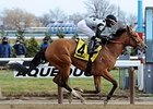 Freudie Anne
