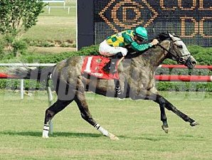 Paddy O'Prado wins the 2010 Colonial Turf Cup.