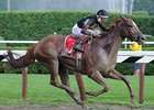 "Ginger Punch pulls away in the Go For Wand.<br><a target=""blank"" href=""http://www.bloodhorse.com/horse-racing/photo-store?ref=http%3A%2F%2Fpictopia.com%2Fperl%2Fgal%3Fprovider_id%3D368%26ptp_photo_id%3D5274784%26ref%3Dstory"">Order This Photo</a>"