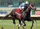Verrazano Works Bullet for BC Dirt Mile