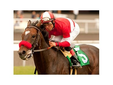 "Acclamation faces 7 in the Eddie Read.<br><a target=""blank"" href=""http://www.bloodhorse.com/horse-racing/photo-store?ref=http%3A%2F%2Fpictopia.com%2Fperl%2Fgal%3Fprovider_id%3D368%26ptp_photo_id%3D9525693%26ref%3Dstory"">Order This Photo</a>"