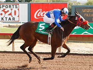 Tornado Betty wins the 2009 Arizona Juvenile Fillies.