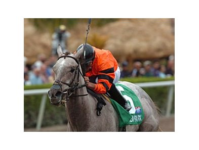 "Graded stakes winner Frolic's Dream takes on 4 in the Nassau County Stakes.<br><a target=""blank"" href=""http://www.bloodhorse.com/horse-racing/photo-store?ref=http%3A%2F%2Fpictopia.com%2Fperl%2Fgal%3Fprovider_id%3D368%26ptp_photo_id%3D7601247%26ref%3Dstory"">Order This Photo</a>"