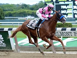 Power Broker Easy Winner in Easy Goer Stakes