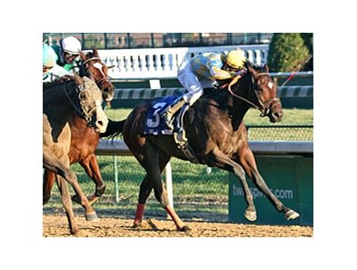 Beethoven won the Kentucky Jockey Club at Churchill Downs last November.