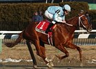 "Haynesfield cruises in the Whirlaway.<br><a target=""blank"" href=""http://www.bloodhorse.com/horse-racing/photo-store?ref=http%3A%2F%2Fpictopia.com%2Fperl%2Fgal%3Fprovider_id%3D368%26ptp_photo_id%3D7683568%26ref%3Dstory"">Order This Photo</a>"