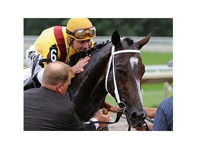 "Haskell winner Rachel Alexandra<br><a target=""blank"" href=""http://www.bloodhorse.com/horse-racing/photo-store?ref=http%3A%2F%2Fpictopia.com%2Fperl%2Fgal%3Fprovider_id%3D368%26ptp_photo_id%3D8379868%26ref%3Dstory"">Order This Photo</a>"