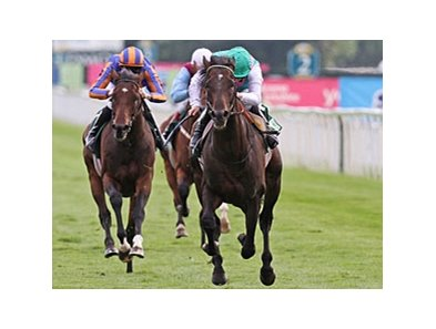 Twice Over wins the Juddmonte International Stakes.