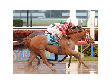 "Pretty Prolific rallies to win the Sugar Swirl in a photo.<br><a target=""blank"" href=""http://www.bloodhorse.com/horse-racing/photo-store?ref=http%3A%2F%2Fpictopia.com%2Fperl%2Fgal%3Fprovider_id%3D368%26ptp_photo_id%3D8735846%26ref%3Dstory"">Order This Photo</a>"