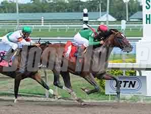 Went the Day Well Maiden Win 03/03/12
