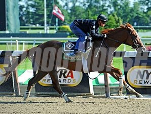 Dullahan works at Belmont Park 6/3/2012
