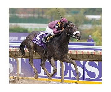 "Breeders' Cup Juvenile (gr. I) winner War Pass heads second-highest number of early Triple Crown nominees ever.<br><a target=""blank"" href=""http://www.bloodhorse.com/horse-racing/photo-store?ref=http%3A%2F%2Fpictopia.com%2Fperl%2Fgal%3Fprovider_id%3D368%26ptp_photo_id%3D2626406%26ref%3Dstory"">Order This Photo</a>"