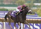 "Breeders' Cup Juvenile (gr. I) winner War Pass is the 2-year-old male 2007 Eclipse Award champ. <br><a target=""blank"" href=""http://www.bloodhorse.com/horse-racing/photo-store?ref=http%3A%2F%2Fpictopia.com%2Fperl%2Fgal%3Fprovider_id%3D368%26ptp_photo_id%3D2626406%26ref%3Dstory"">Order This Photo</a>"