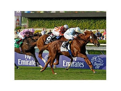 "Conduit gets by a determined Presious Passion to win his second Breeders' Cup Turf.<br><a target=""blank"" href=""http://www.bloodhorse.com/horse-racing/photo-store?ref=http%3A%2F%2Fpictopia.com%2Fperl%2Fgal%3Fprovider_id%3D368%26ptp_photo_id%3D8609764%26ref%3Dstory"">Order This Photo</a>"