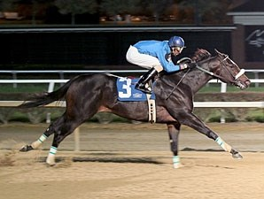 Captain Genius wins the 2012 Sophomore Sprint Championship.