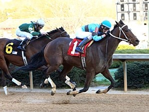 Tiz Miz Sue wins the 2013 Azeri Stakes.