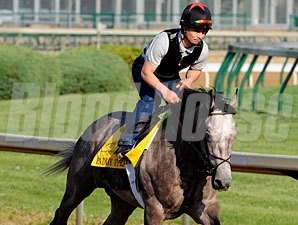 Paddy O'Prado at Churchill Downs on April 16, 2010.