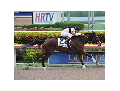 "Devil's Cave comes home strong to win the Ocala.<br><a target=""blank"" href=""http://photos.bloodhorse.com/AtTheRaces-1/at-the-races-2013/27257665_QgCqdh#!i=2995373966&k=nPKNGQS"">Order This Photo</a>"