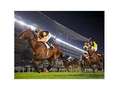 Trade Storm streaks home to win the Zabeel Mile.