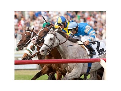 Cozzetti won the American Derby by a neck at Arlington Park July 14.