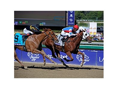 "Groupie Doll wins the 2013 Breeders Cup Filly and Mare Sprint. <br><a target=""blank"" href=""http://photos.bloodhorse.com/BreedersCup/2013-Breeders-Cup/Filly-and-Mare-Sprint/33149887_tpsLsn#!i=2878176783&k=NpBxhqG"">Order This Photo</a>"