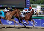 Groupie Doll Repeats in Filly & Mare Sprint