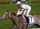 "Laragh won the Jessamine Stakes on the grass at Keeneland. <br><a target=""blank"" href=""http://www.bloodhorse.com/horse-racing/photo-store?ref=http%3A%2F%2Fpictopia.com%2Fperl%2Fgal%3Fprovider_id%3D368%26ptp_photo_id%3D6253595%0D%0A%26ref%3Dstory"">Order This Photo</a>"