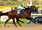"Air Commander returns for the Strub Stakes after his 52-1 shock in the San Fernando.<br><a target=""blank"" href=""http://www.bloodhorse.com/horse-racing/photo-store?ref=http%3A%2F%2Fpictopia.com%2Fperl%2Fgal%3Fprovider_id%3D368%26ptp_photo_id%3D3278386%26ref%3Dstory"">Order This Photo</a>"