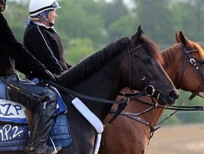 Dialed In Preakness Win Would Help Others