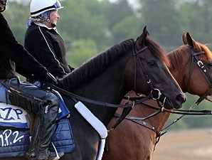 Dialed In - Pimlico, May 19, 2011