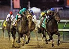 Blame and Zenyatta during the 2010 Breeders' Cup Classic.