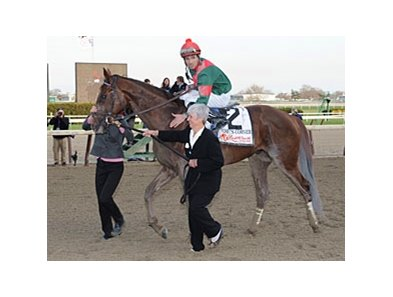 Toby's Corner
