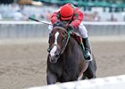 "Flat Out and Alex Solis leave the rest behind in the Suburban.<br><a target=""blank"" href=""http://www.bloodhorse.com/horse-racing/photo-store?ref=http%3A%2F%2Fpictopia.com%2Fperl%2Fgal%3Fprovider_id%3D368%26ptp_photo_id%3D9584445%26ref%3Dstory"">Order This Photo</a>"