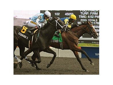 James Street outfinishes Stunning Stag to win the Seagram Cup at Woodbine.