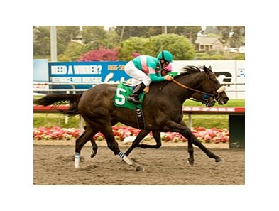 "Jockey Mike Smith rides Zenyatta to a narrow win in the Vanity Handicap at Hollywood Park. <br><a target=""blank"" href=""http://www.bloodhorse.com/horse-racing/photo-store?ref=http%3A%2F%2Fpictopia.com%2Fperl%2Fgal%3Fprovider_id%3D368%26ptp_photo_id%3D9064788%26ref%3Dstory"">Order This Photo</a>"