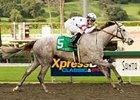 "Stardom Bound won the Las Virgenes in her most recent start. <br><a target=""blank"" href=""http://www.bloodhorse.com/horse-racing/photo-store?ref=http%3A%2F%2Fgallery.pictopia.com%2Fbloodhorse%2Fgallery%2FS658764%2Fphoto%2F7685866%2F%3Fo%3D1"">Order This Photo</a>"