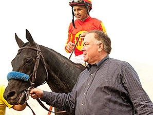 Shakin It Up wins the 2014 Strub.