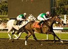 "Santa Monica winner Ventura takes on the boys in the Kilroe Mile.<br><a target=""blank"" href=""http://www.bloodhorse.com/horse-racing/photo-store?ref=http%3A%2F%2Fpictopia.com%2Fperl%2Fgal%3Fprovider_id%3D368%26ptp_photo_id%3D7610819%26ref%3Dstory"">Order This Photo</a>"