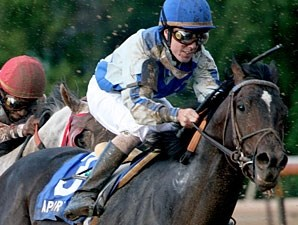 Apart wins the 2010 Super Derby.