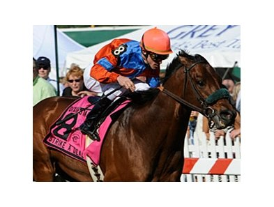 "Strike a Deal will carry top weight of 123 pounds in the Oceanport Stakes.<br><a target=""blank"" href=""http://www.bloodhorse.com/horse-racing/photo-store?ref=http%3A%2F%2Fpictopia.com%2Fperl%2Fgal%3Fprovider_id%3D368%26ptp_photo_id%3D9895943%26ref%3Dstory"">Order This Photo</a>"