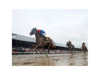 "Shadwell Travers Stakes winner Summer Bird<br><a target=""blank"" href=""http://www.bloodhorse.com/horse-racing/photo-store?ref=http%3A%2F%2Fpictopia.com%2Fperl%2Fgal%3Fprovider_id%3D368%26ptp_photo_id%3D8443497%26ref%3Dstory"">Order This Photo</a>"