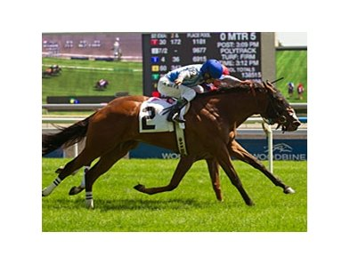 Overheard won the Alywow Stakes at Woodbine June 9.