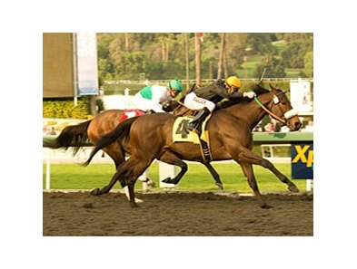 "Papa Clem fights off Smart Bid to take the San Fernando.<br><a target=""blank"" href=""http://www.bloodhorse.com/horse-racing/photo-store?ref=http%3A%2F%2Fpictopia.com%2Fperl%2Fgal%3Fprovider_id%3D368%26ptp_photo_id%3D8746875%26ref%3Dstory"">Order This Photo</a>"