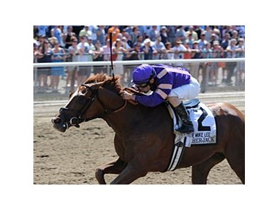 "Amberjack will attempt a sweep of the Big Apple Triple in the Albany Stakes.<br><a target=""blank"" href=""http://photos.bloodhorse.com/AtTheRaces-1/at-the-races-2013/27257665_QgCqdh#!i=2548099129&k=8K3DWcx"">Order This Photo</a>"